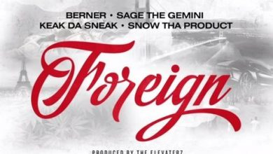 Berner - Foreign cover