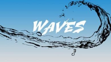 Chanel West Coast - Waves cover