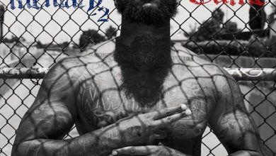 The Game - Documentary 2 cover
